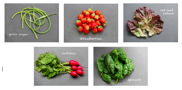 Things in a June CSA.